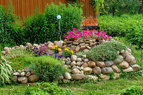 Цветы и растения для альпийской горки