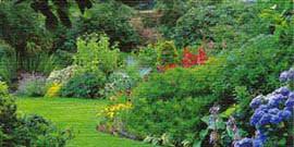 Английский стиль в ландшафтном дизайне – особенности и обустройство