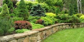 Ландшафтный дизайн на склоне – выбор оформления