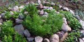 Клумбы из камней: оригинальная гармония с природой