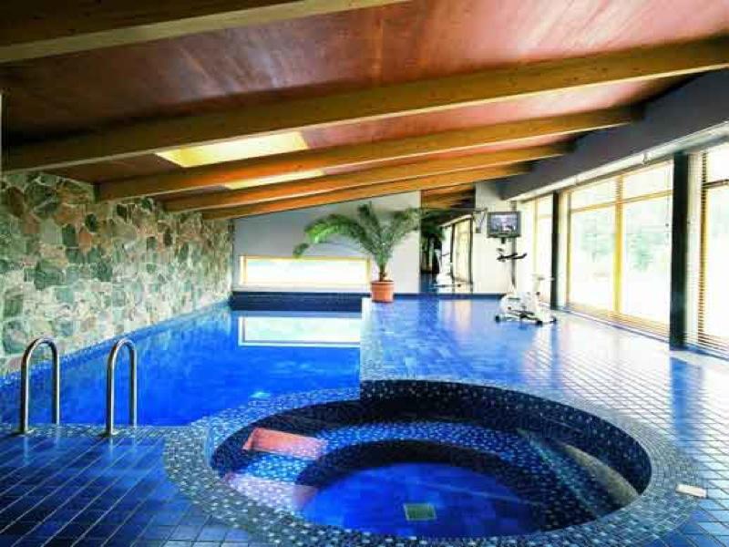 Сауна с бассейном в частном доме своими руками