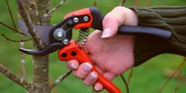 Пила для обрезки деревьев: как выбрать инструмент «по руке»?