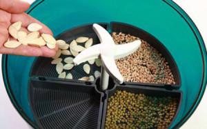 На фото - устройство для проращивания семян, msk.blizko.ru