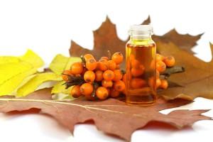 На фото - свойства облепихового масла, rastikosa.com