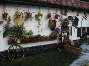 Ландшафтный дизайн деревенского участка – сад и огород