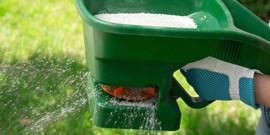 Удобрение для газона – чем «подкормить» траву?