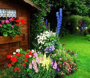 На фото - цветочный палисадник у дома, 4gazon.ru