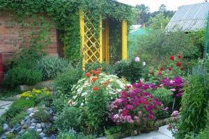 На фото - палисадник с разными цветами, ямалдомстрой.рф