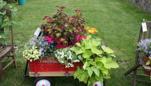 Необычные садовые клумбы: дизайн и оформление фото