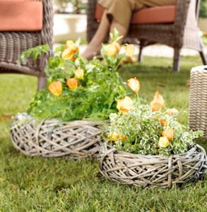 Клумбы в саду своими руками: выбор растений и места фото