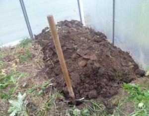 На фото - обработка почвы в парнике, фабрикатеплиц.рф
