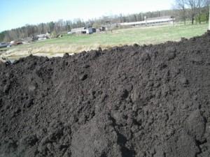 Фото почвы чернозёма, ast33.ru
