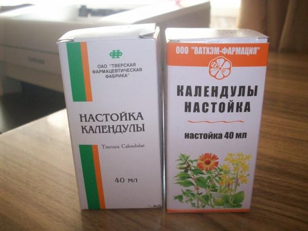 Календула - лечебные свойства и противопоказания растения + видео