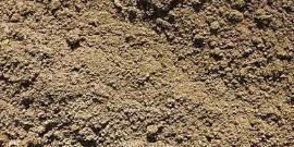 Типы почв и их характеристики – все, что важно для садовода!
