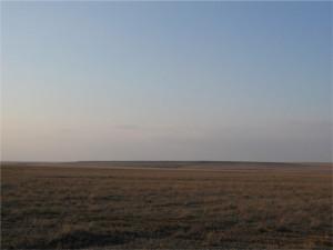 Фото лесостепной почвы, geography7.wikidot.com