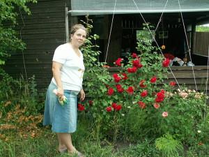 Фото ухода за плетистой розой, mmmaria71.blog.ru