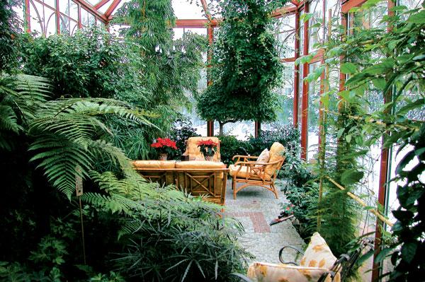 Как сделать зимний сад дома
