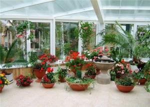 Фото цветов в зимнем саду, felice-fera.blogspot.com