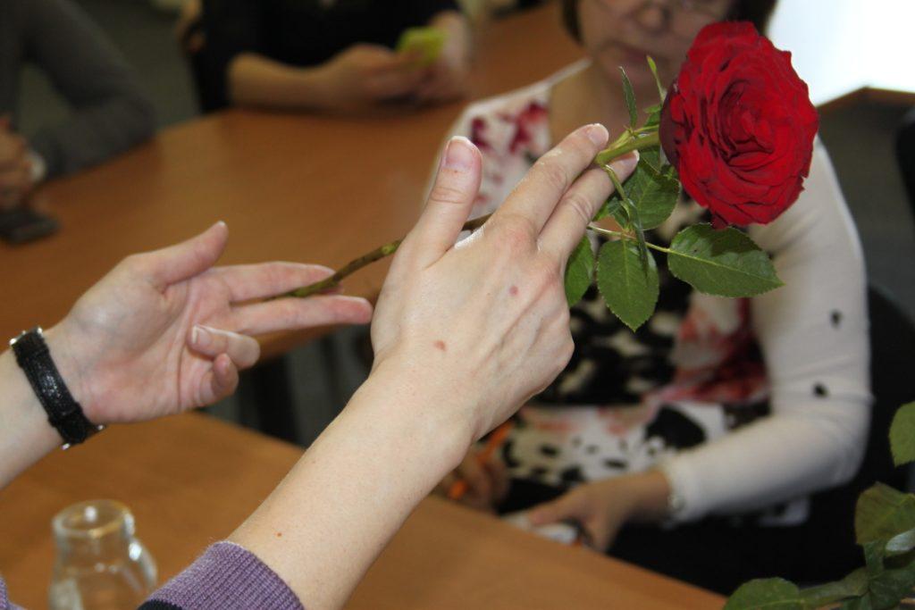 Пример обрезки розы для черенкования
