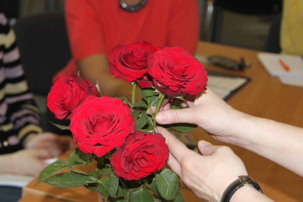 Отбор роз для черенкования