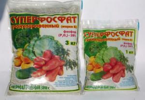 На фото - фосфорные удобрения, tsvetnik.info