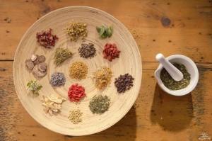 Фото про полезные лекарственные растения, tv.lianews.ru