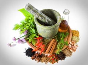 Фото про лекарственные растения и противопоказания, archives.maillist.ru