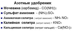 Фото состава азотных удобрений, 900igr.net