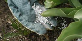 Минеральные удобрения – виды и их применение