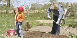 Как облегчить садовые работы на даче?