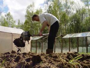На фото - внесение компоста в почву, dobrivo.com.ua