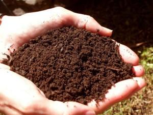 На фото - определение готовности почвы, vyrashhivanie-ovoshhej.postroyforum.ru