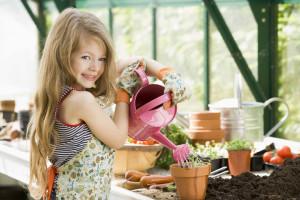 Фото про требования растений к посадке, flowers-of.ru