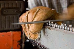 Процесс заточки цепи – труднее пиления! фото