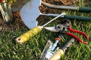 Фото про садовые работы на даче, gazetavv.com