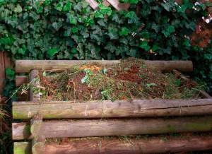 На фото - уборка дачного участка от мусора, ekovse.ru