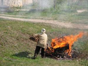 На фото - сжигание мусора на садовом участке, росяма.рф