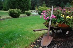 На фото - важный инструмент садовода, udachnyi.ru