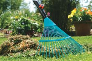 Фото про необходимый инструмент садовода, bakaut.biz