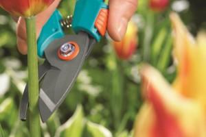 На фото - набор инструментов для садовода, supersadovod.ru