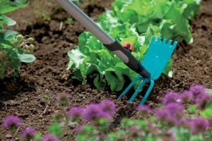 Фото про инструмент для садоводов и огородников, italian-mirrors.com