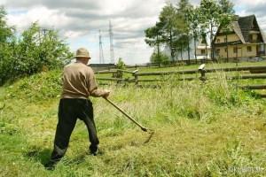 На фото - набор инструментов для садовода, vipgsm.shop.by
