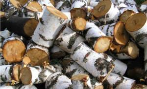 Фото березовых дров для бани, 24banya.ru