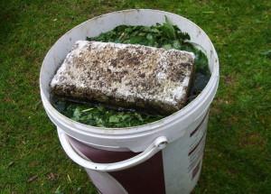 Фото компоста для подкормки огурцов в теплице, parnik-teplitsa.ru