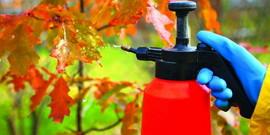 Осенняя обработка сада – работы по подготовке к новому сезону