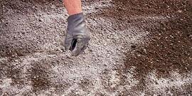 Содержание гумуса в подзолистых почвах