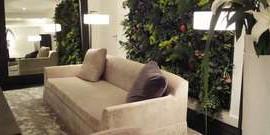 Вертикальное озеленение в квартире – природа в вашем доме