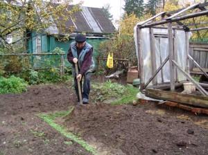 На фото - осенняя обработка почвы в саду, radisada.ru