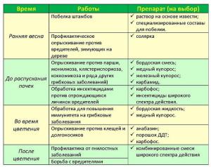 На фото - схема сроков и препаратов для обработки сада, derevoved.com