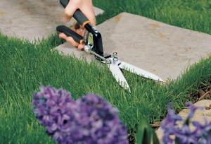 Какой инструмент необходим для ухода за газонной травой?